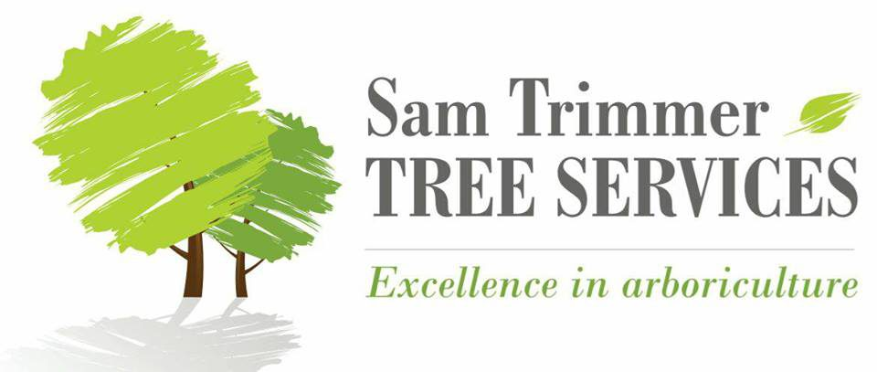 Offering you a highly professional and friendly tree service
